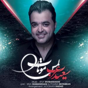 دانلود آهنگ جدید و بسیار زیبای سعید عرب به نام لمس موهات