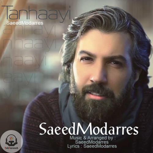 دانلود موزیک ویدیو جدید سعید مدرس تنهایی